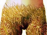 12-13-01 Grüne Hose