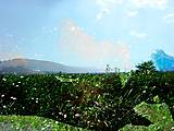12-13-01 Landschaft mit Figur