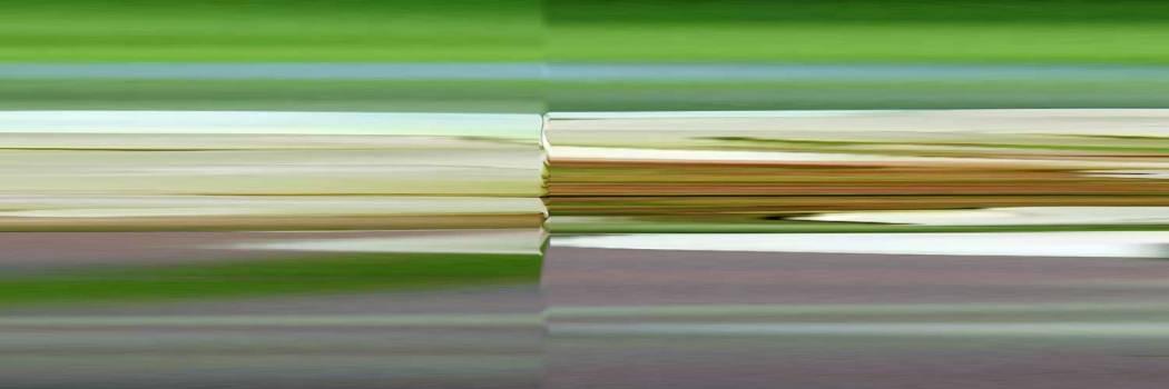 01-60-04 Beschleunigter Klee